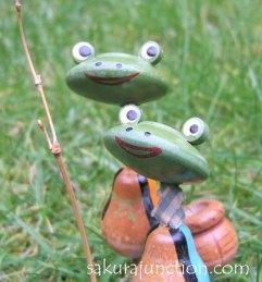 Frog webC