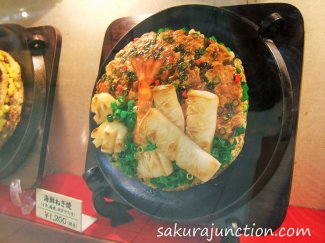 Okonomiyaki model