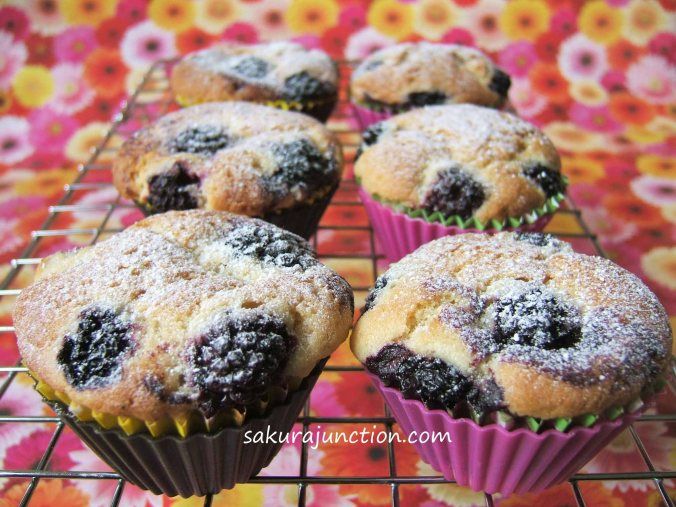 Blackberry Cup Cakes 2