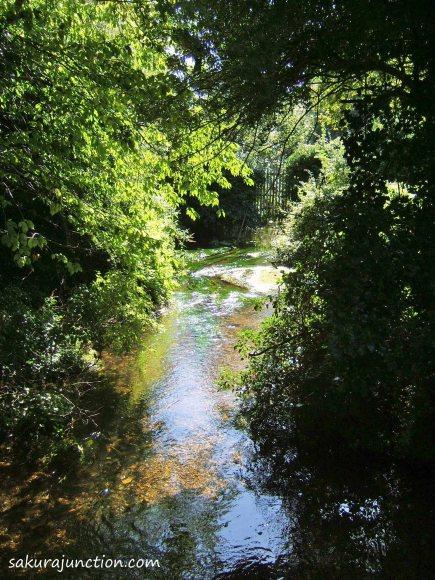 River Cray