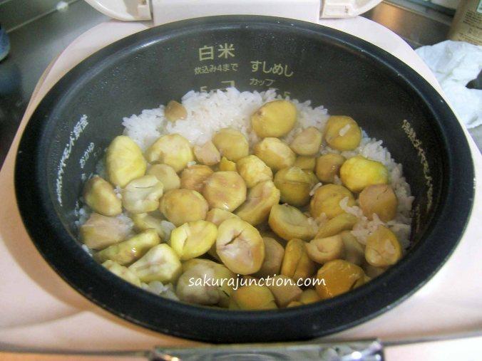 Cooked Kuri gohan