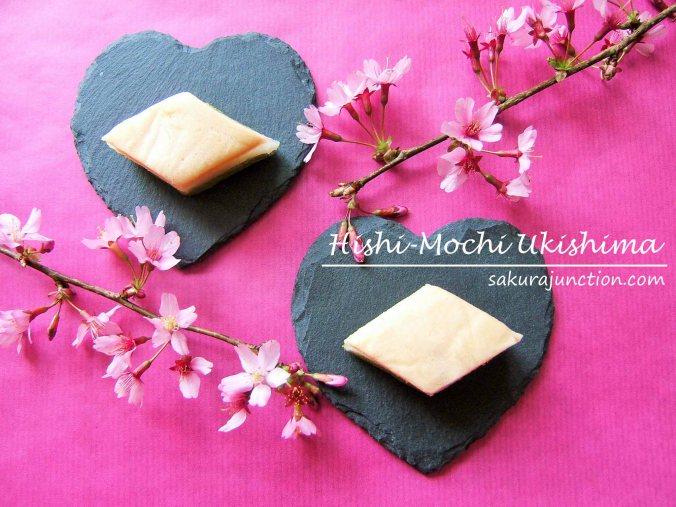 Hishi-Mochi Ukishima SJ top