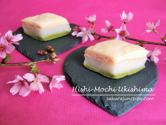 Hishi-mochi ukishima SJ