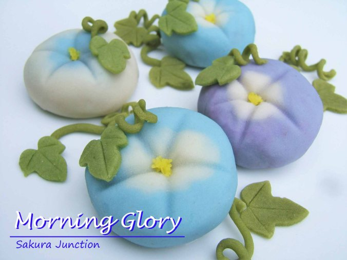 Morning Glory blue & purple