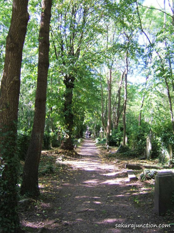 Path in Cemetery
