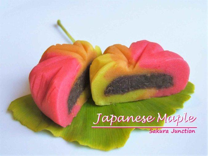 japanese-maple-halved