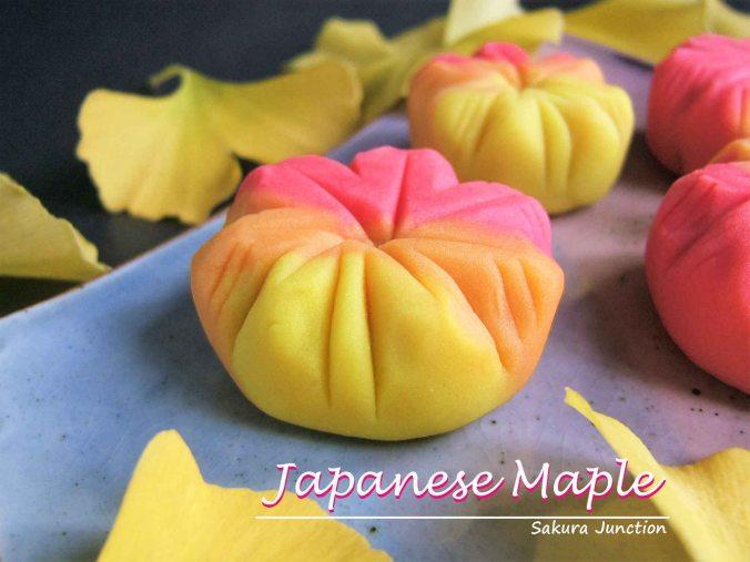 japanese-maple-side