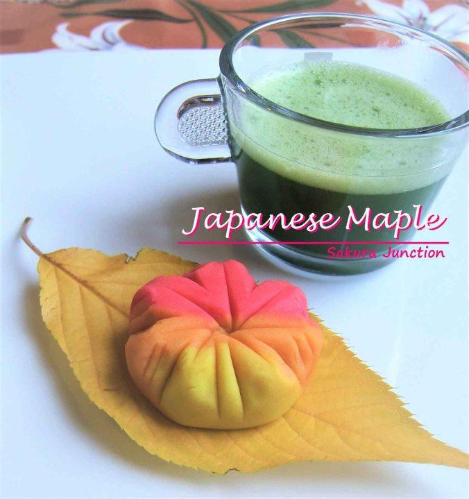 japanese-maple-with-tea
