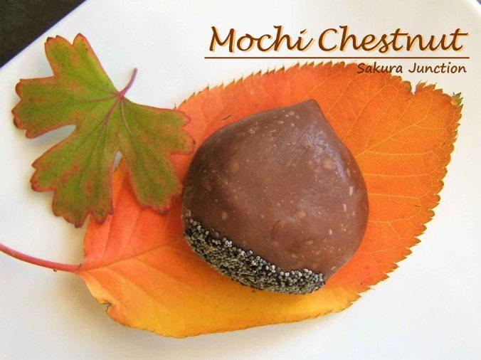 mochi-chestnut-1