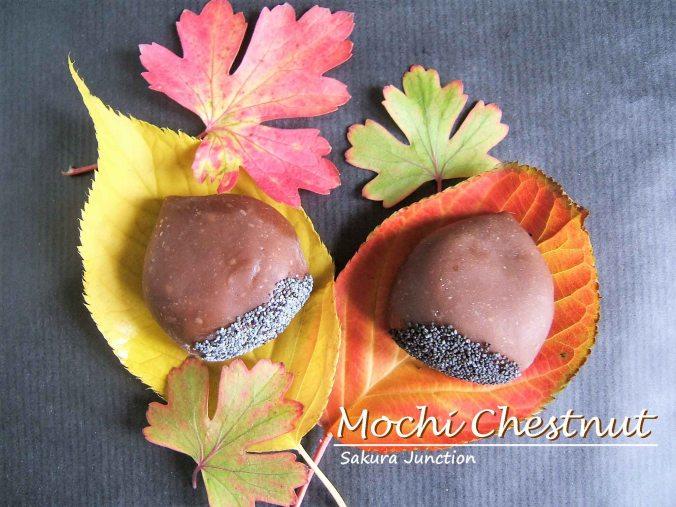 mochi-chestnut-2