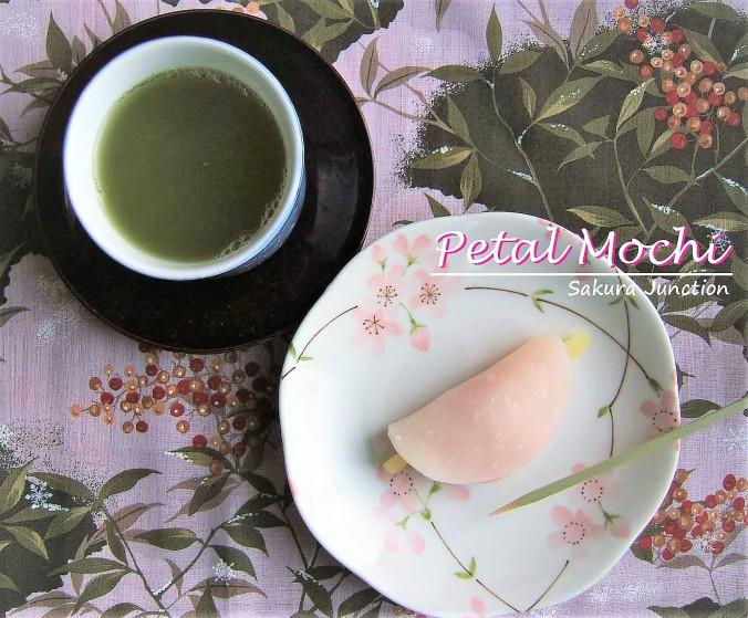 petal-mochi-top-croped2