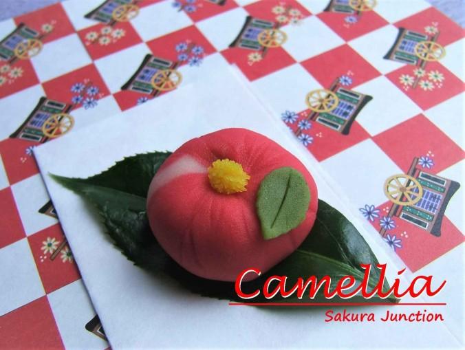 camellia-1-2