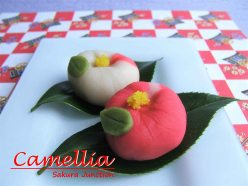 camellia-Japanese Sweet Wagashi London nerikiri