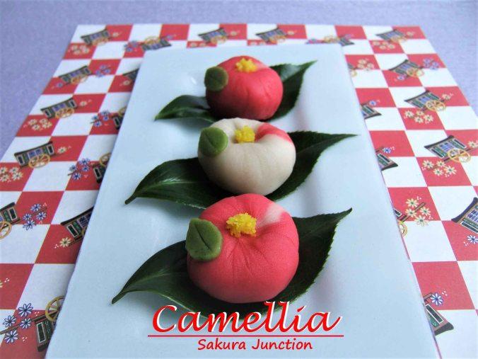 camellia-3-side
