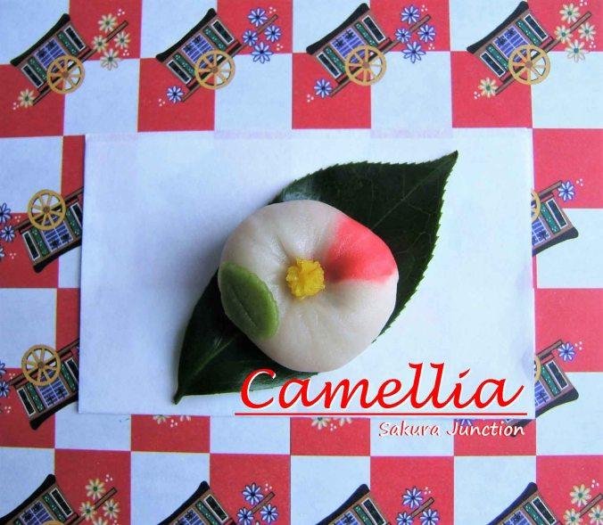 camellia-white