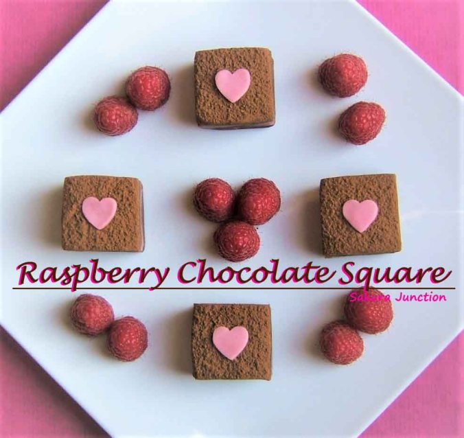 raspberry-chocolate-sq-top