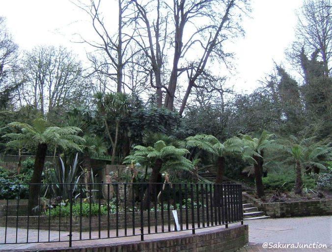 Holland Park3