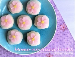 Momo no Hana Mochi Wagashi Japanese Sweet London 創作和菓子