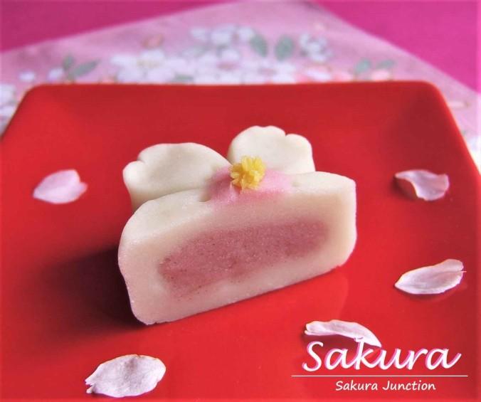 Sakura 1-2