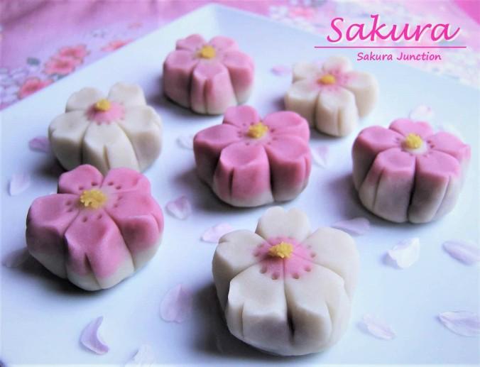 Sakura 7-2