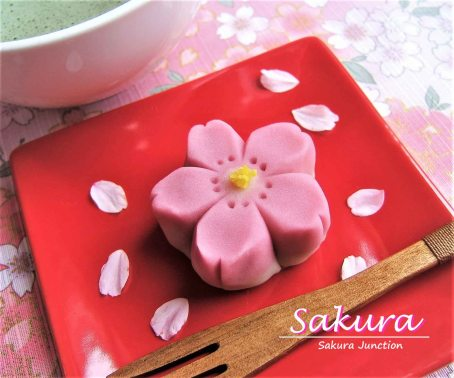 Sakura Wagashi Japanese Sweet London Cherry blossom