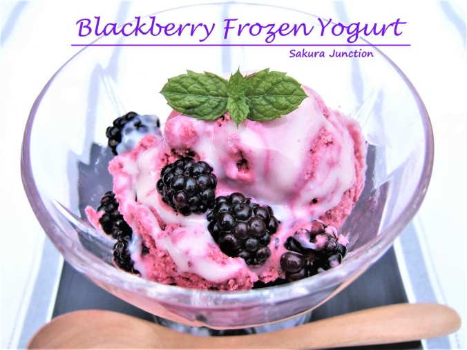 Blackberry Froze Yogurt4p