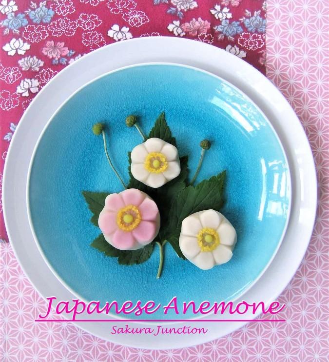 Japanese Anemone2p