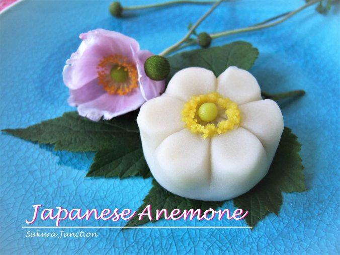 Japanese Anemone3