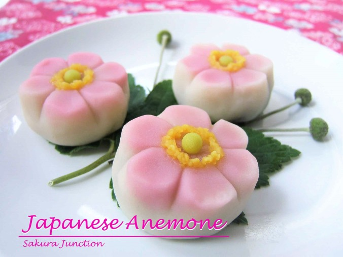 Japanese Anemone4p