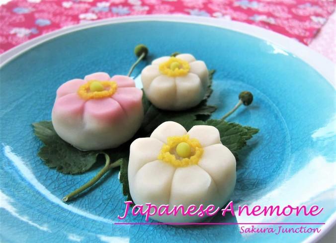 Japanese Anemone6p