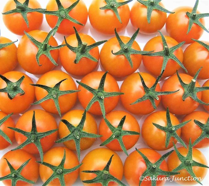 Star Tomatoes