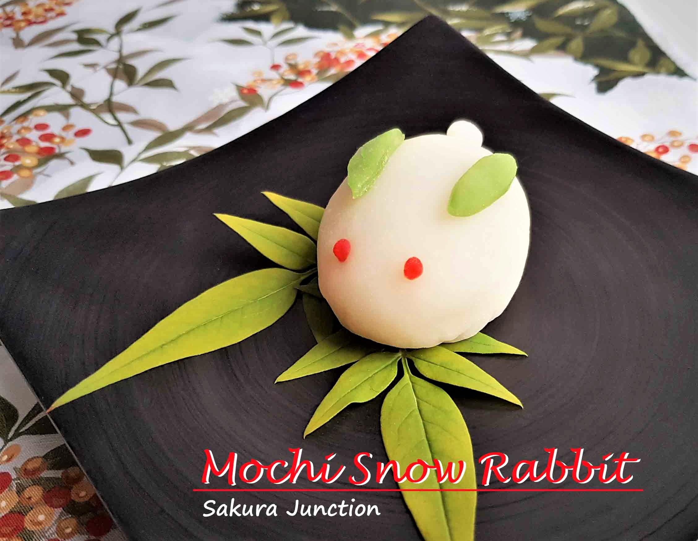 Snow Rabbit 4e