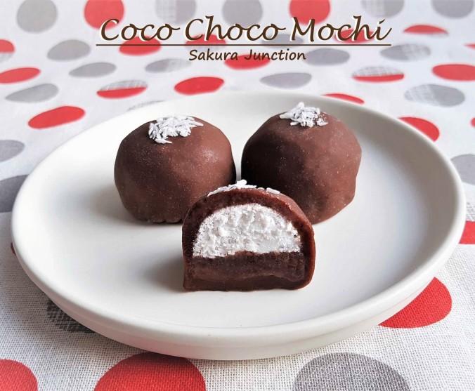 Coco choco Mochi 5e2