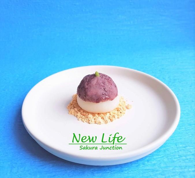 New Life4