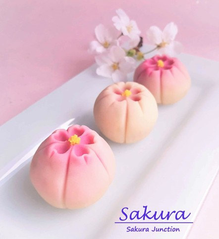 Sakura Japanese sweets wagashi London