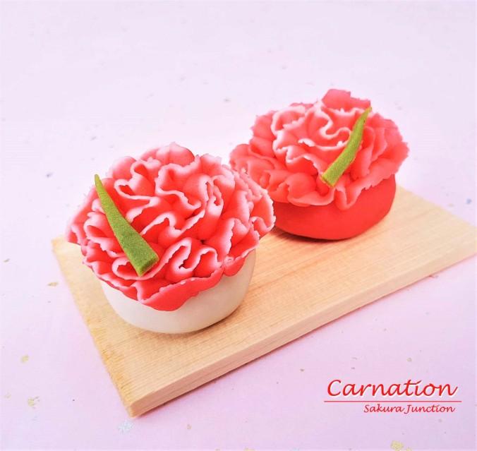 Carnation 10