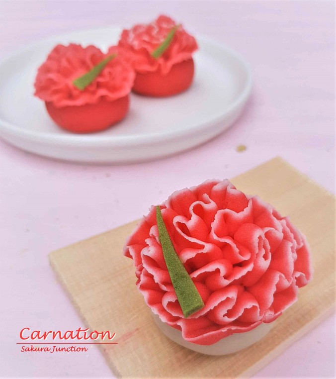 Carnation 5-2