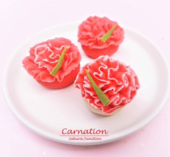 Carnation 7-2