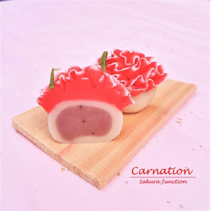 Carnation 8