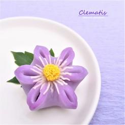 Clematis 7