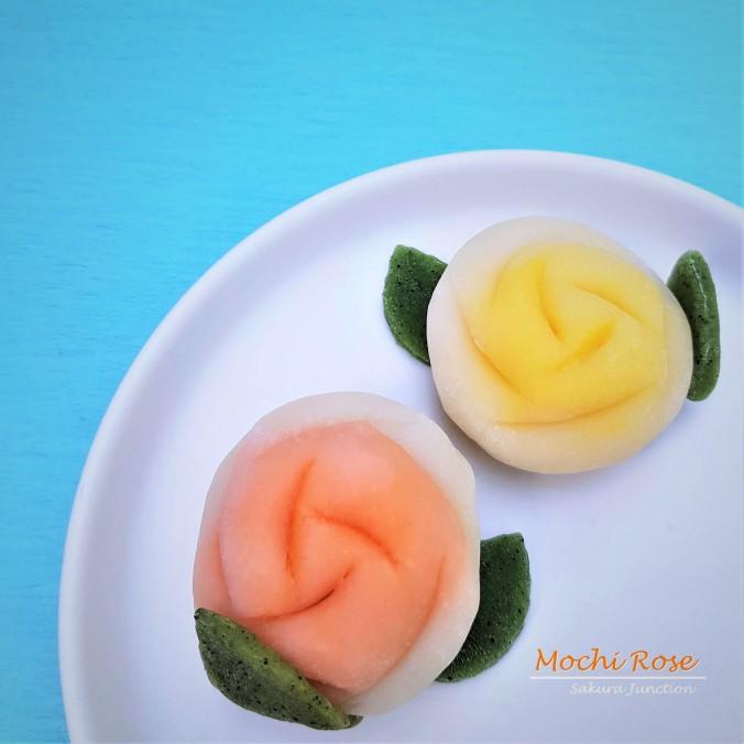 Mochi Rose6