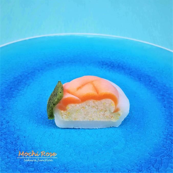 Mochi Rose7