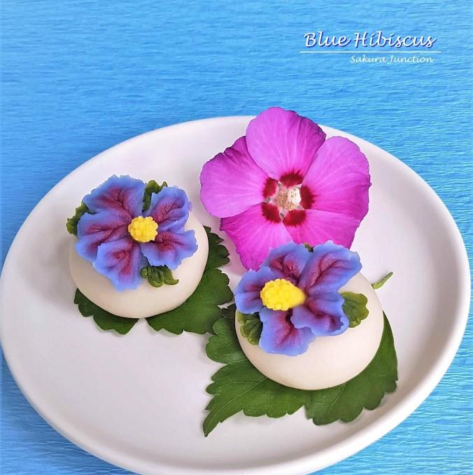 Blue Hibiscus2