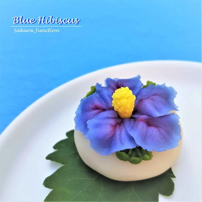 Blue Hibiscus7