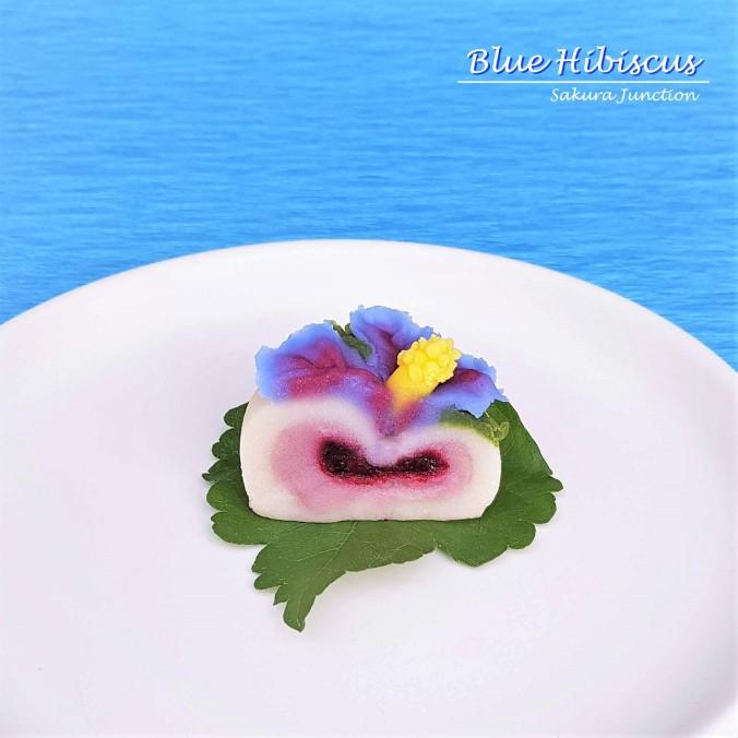 Blue Hibiscus8