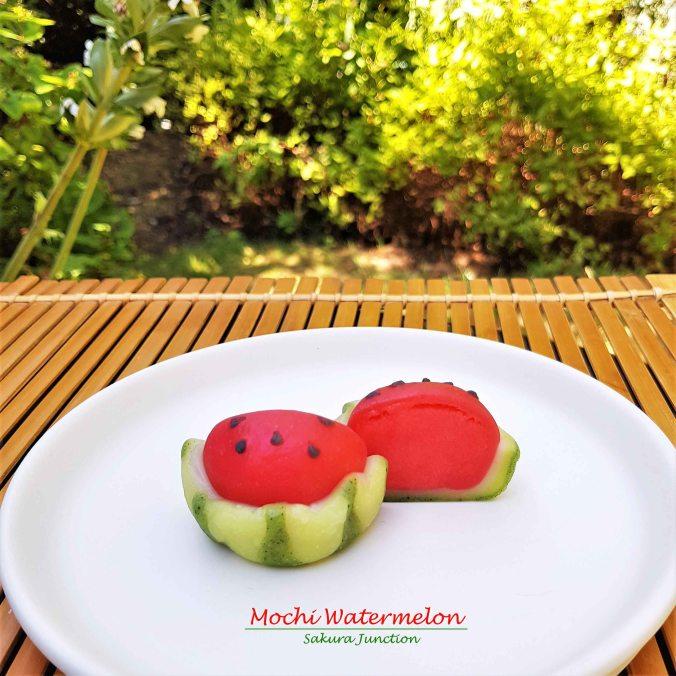 Mochi Watermelon8