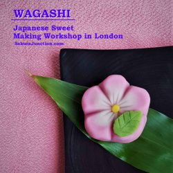 Wagashi Workshop 1