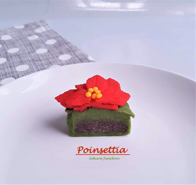 Poinsettia5