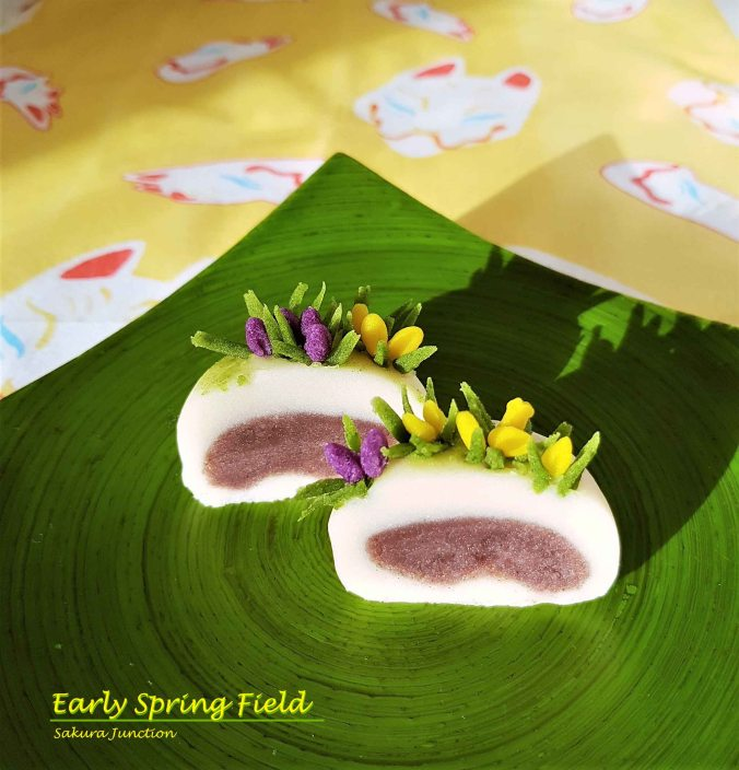 Spring Field Crocus 3
