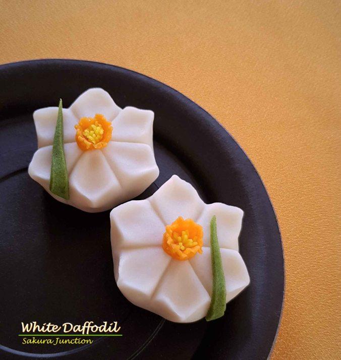 W Daffodil2